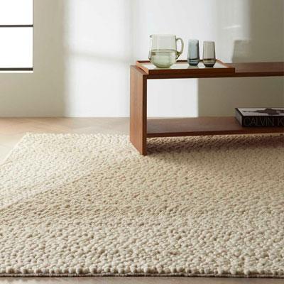 nubby tan area rug
