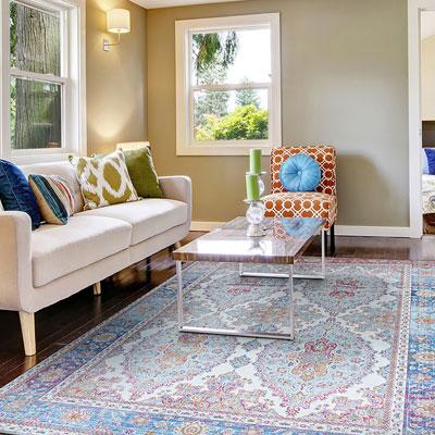 light paisley area rug
